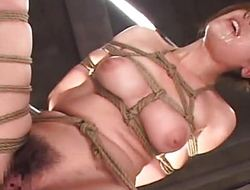 Asian venerated roped up procurement bagatelle fucked marvelously